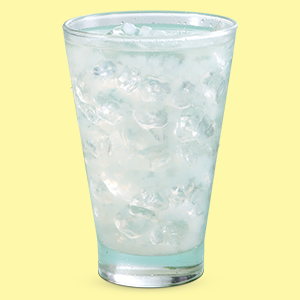 Bill for Rs. 300 and get a Fresh lime Cocojal Free